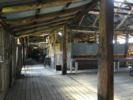 Boorolong Woolshed Interior, Armidale. Photo by Virginia Wong See.
