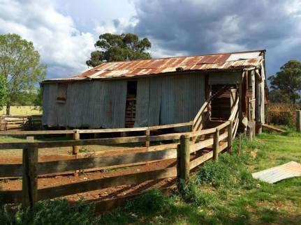 Topper's Mountain Woolshed, Tingha. Photo by Virginia Wong See.