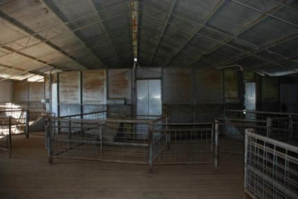 Maderty Woolshed Interior, Coonabarabran. Photo by Virginia Wong See.